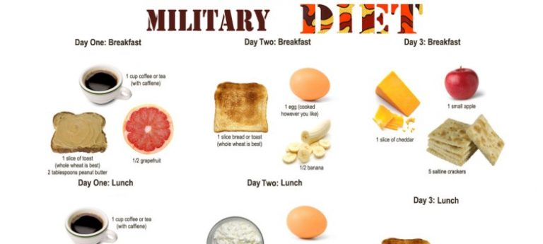 Commonsense Guide to the Military Diet